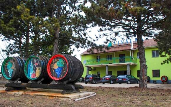 Penzion leží ve vinařské obci Čejč