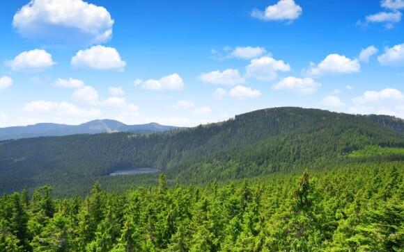 Poznejte krásy Šumavy a Boubínského pralesa