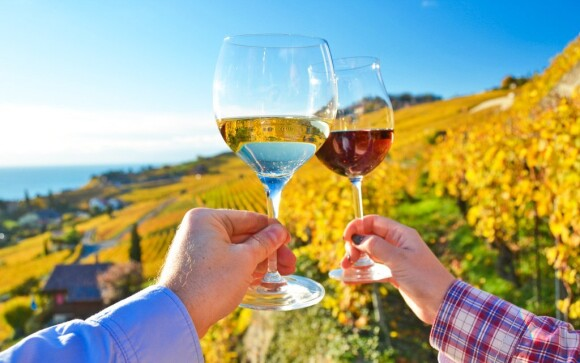 Pohoda, víno a dobrá nálada - to je dovolenka na južnej Mora
