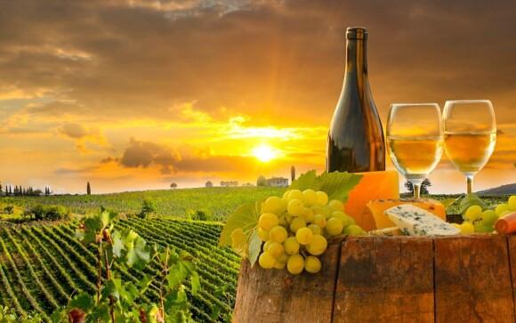 Užijte si vinařský pobyt