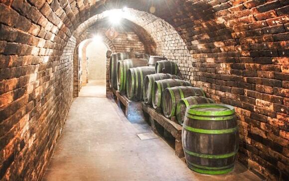 Penzion má vlastní zásoby vína