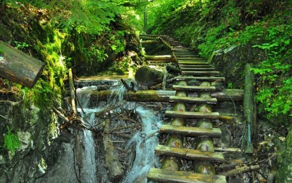 Zájdite si do Slovenského raja