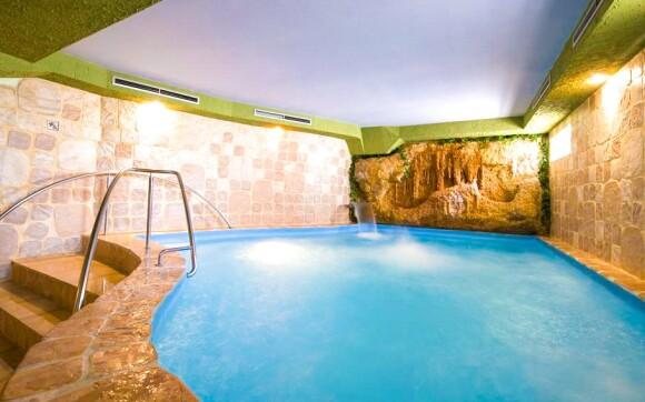 Bazén ve wellness Hotelu Kormorán ***