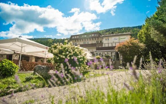 Hotel Haus Lavendel leží kousek od jezera Ossiach