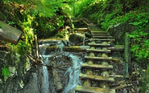 Máte rádi přírodu? Pak Vás Slovenský ráj určitě nadchne