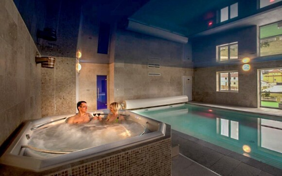 Bazén, vírivka, sauna, wellness, Hotel Lions, Rakovnicko
