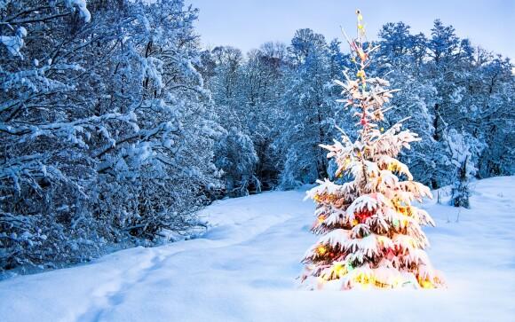 Užite si zimný vianočný pobyt v Krkonošiach