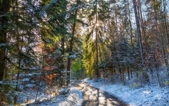 Výlet do Slovenského raja patrí k tým nezabudnuteľným