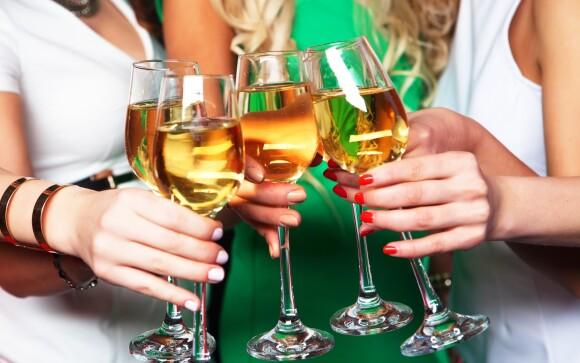 Rozlúčka so slobodou pre milovníkov vína, Penzión Zaječák
