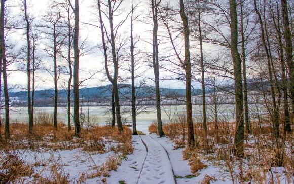 Šumava je nádherná i v zimě