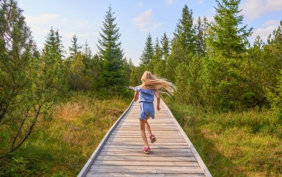 Užite si dovolenku na Šumave