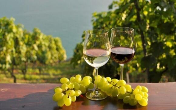 Doprajte si skvelé moravské víno