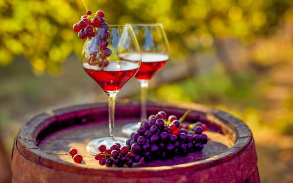 Pobyt s vínem, Penzion V Zahraničí, Bořetice