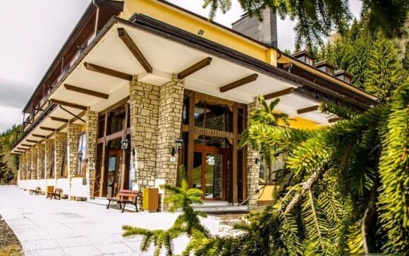Ubytujte se v hotelu Alpenhof, který najdete v super lokalitě