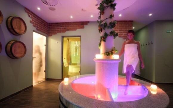 Pro své hosty má hotel k dispozici bohatě zařízené wellness centrum