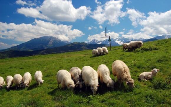 Obklopte se romantickou krajinou Belianských Tater