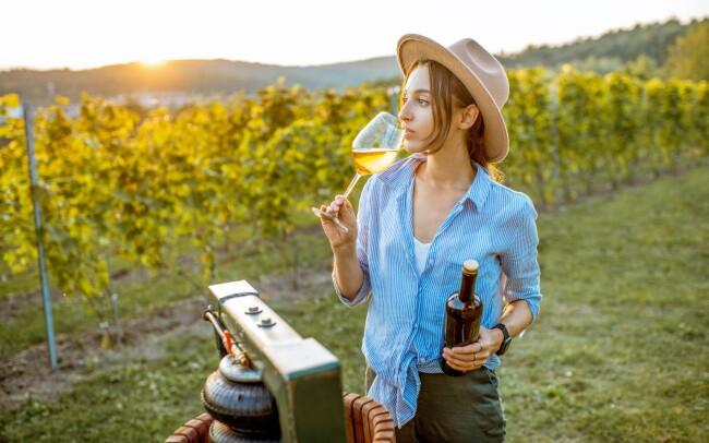 39% Jižní Morava: 3–5 denní vinařský pobyt pro DVA u…