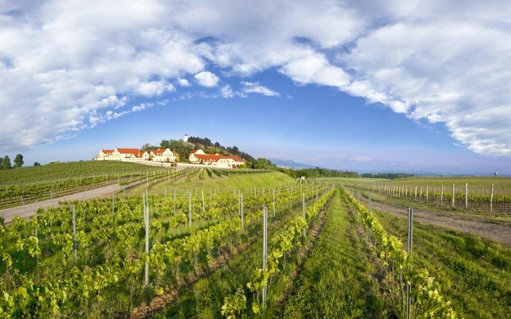 Vinařství U Kapličky nabízí mnohem víc než jen skvělé víno