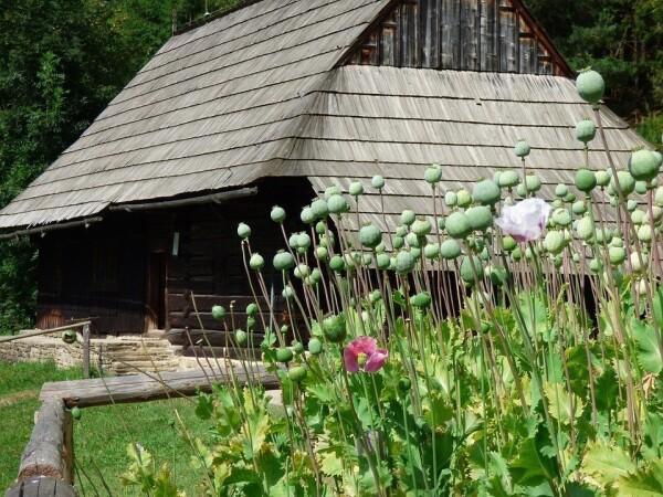 Muzeum oravské dědiny Zuberec - Brestová