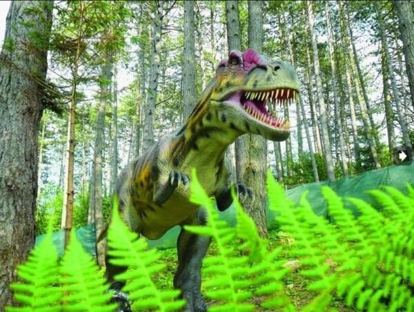 Dino a lanový park Terchová