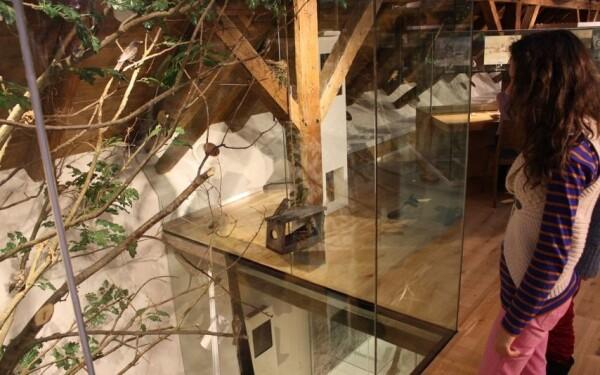 Sýpka – Muzeum Orlických hor