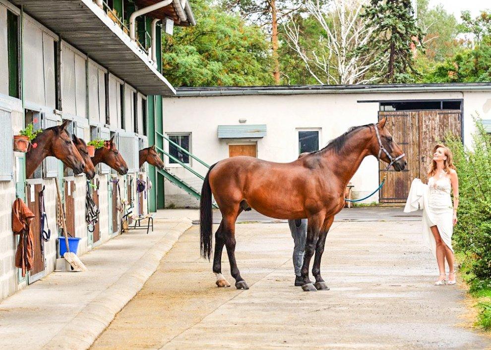 Zámecký pobyt s koňmi