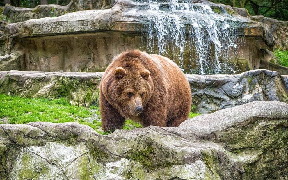 Zoo Spiš