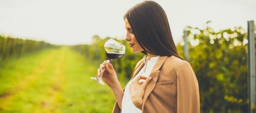 Skloňujeme víno alebo aká pravda sa nachádza na dne pohára?