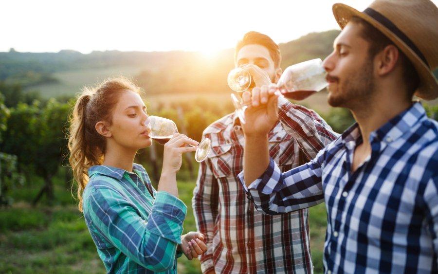 Vinobrania a ďalšie jesenné vinárske podujatia (nielen) na južnej Morave