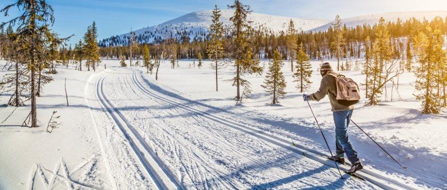 Zima v Česku aneb Nejlepší běžkařské trasy v Jeseníkách a na Šumavě