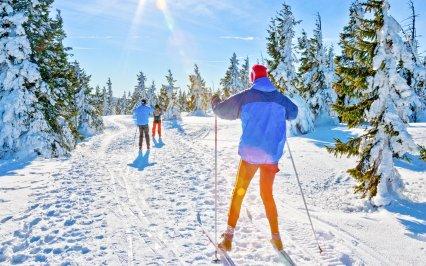 Velký průvodce po běžkařských trasách v Krkonoších a Orlických horách