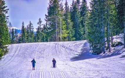 Hurá na běžky do Krušných, Lužických či Jizerských hor! Poradíme vám ty nejlepší trasy